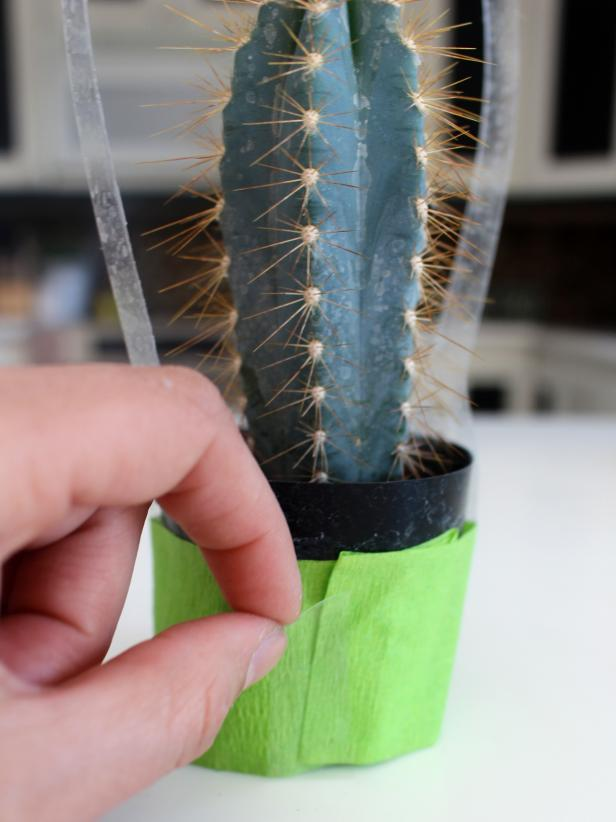CI-Michelle-Kim_Cactus-party-favor-wrap-crepe-paper_v