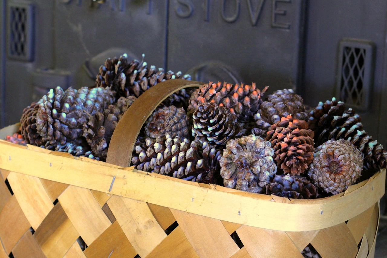 How To Make Scented Pinecone Fire Starters How Tos Diy