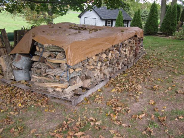 Stacked Firewood With Tarp