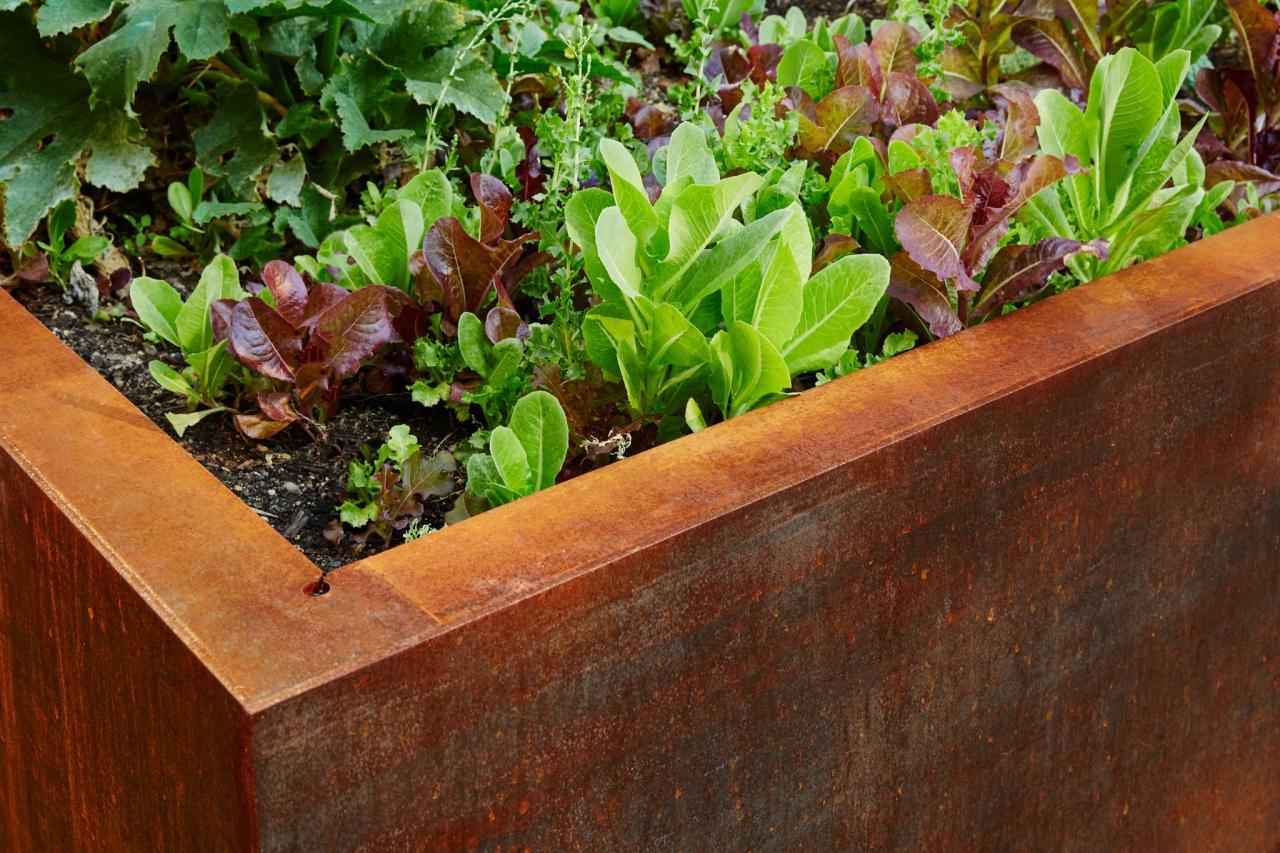 UN Headquarters Creates Rooftop Garden | DIY Network Blog: Made + ...
