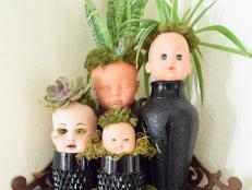 Dolls are easy to come by at thrift stores and flea markets. Start collecting the creepiest ones you can find to be transformed into a ghastly mini doll garden.