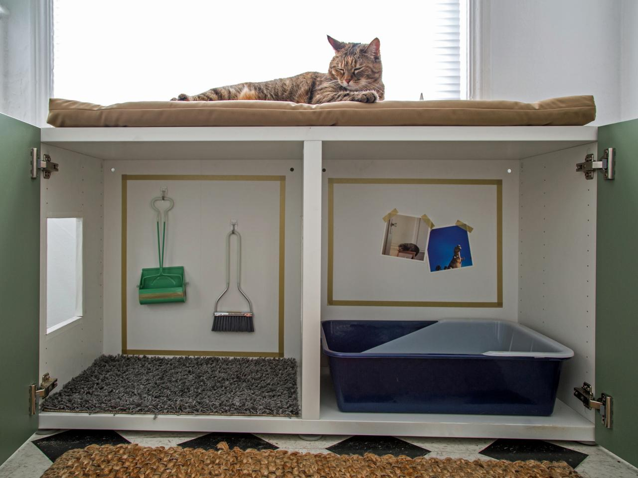 How To Conceal A Kitty Litter Box Inside A Cabinet Hgtv