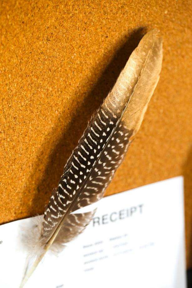 A feather pushpin is displayed on a bulletin board.