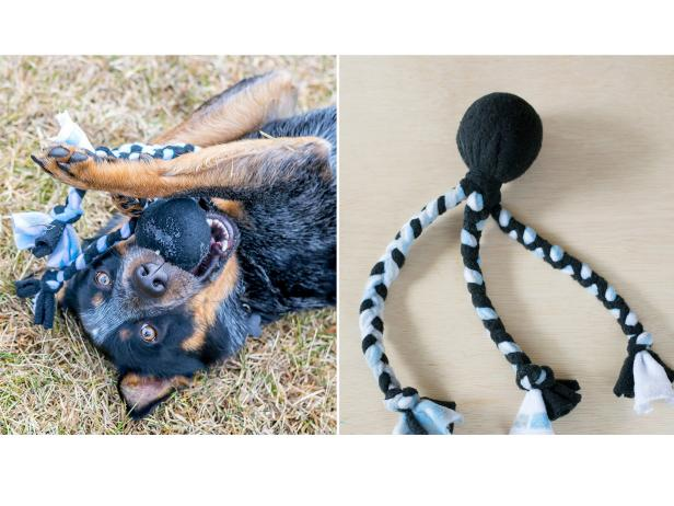 Diy Dog Toy Diy Network Blog Made Remade Diy
