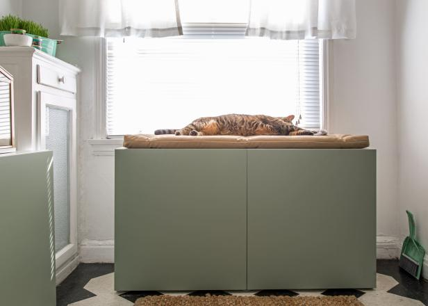 How to Conceal a Kitty Litter Box Inside a Cabinet | HGTV