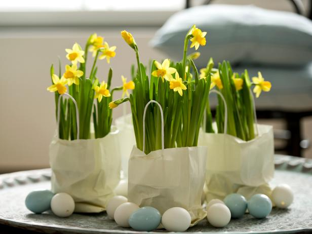 Ways to Use Easter Bulbs