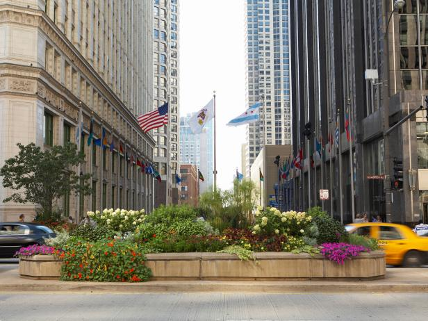 Michigan Avenue Landscaping