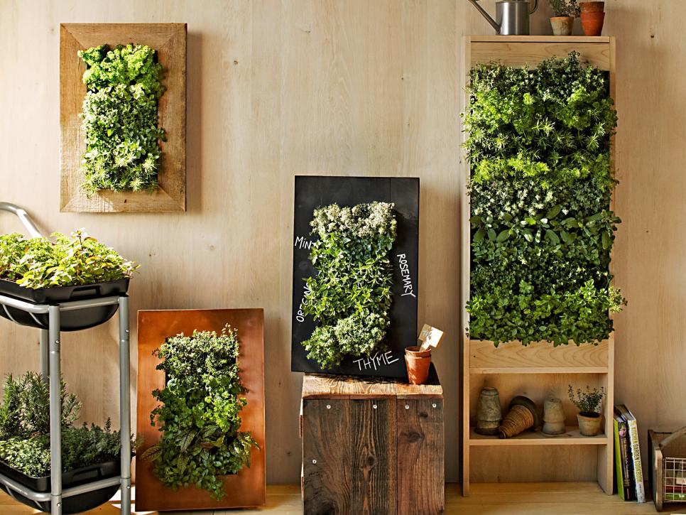Vertical Garden Design Ideas Vertical Garden Design Ideas