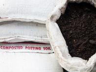 What Is the Difference Between Potting Soil and Garden Soil?