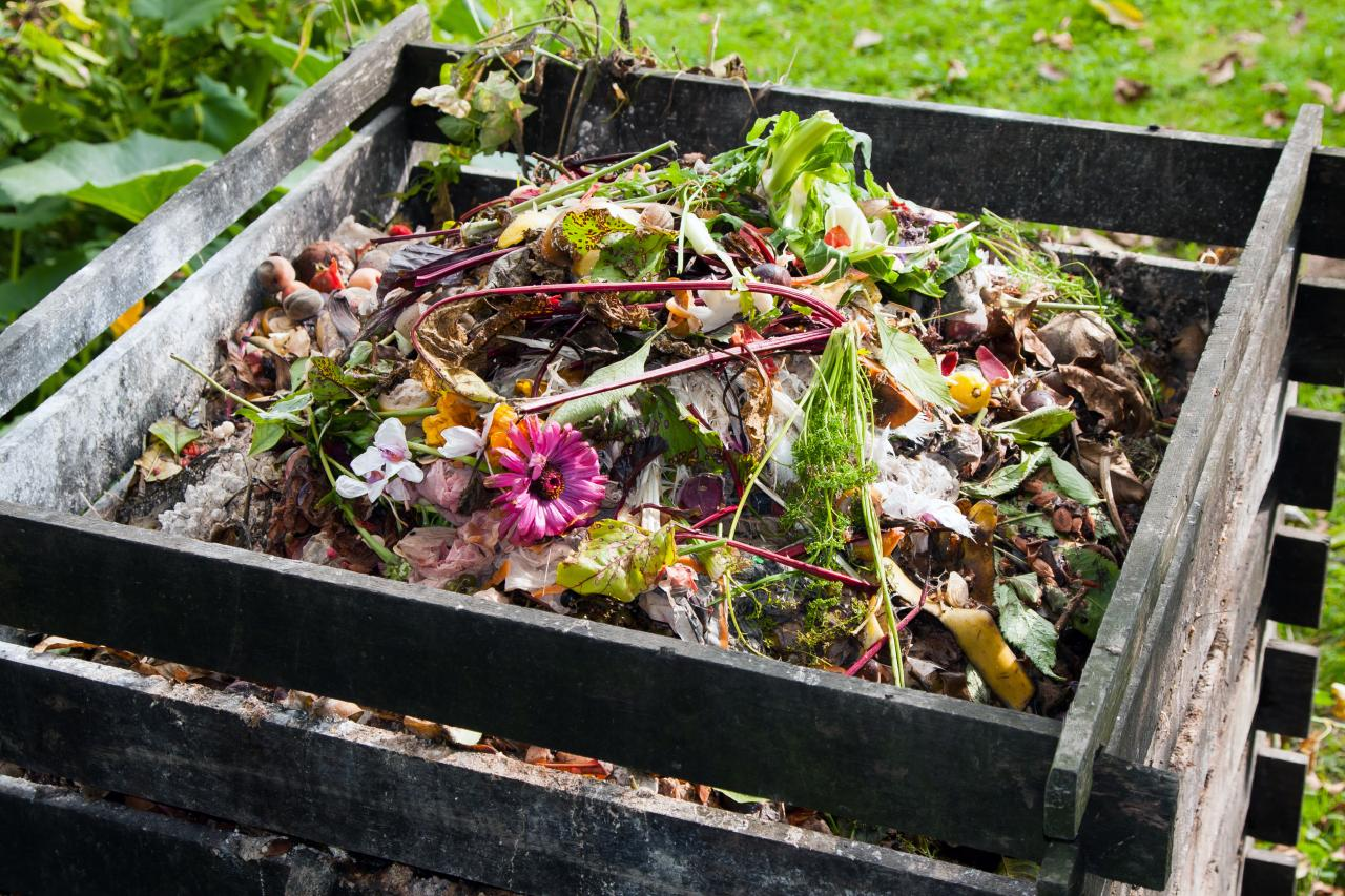 How To Start A Compost Pile Diy