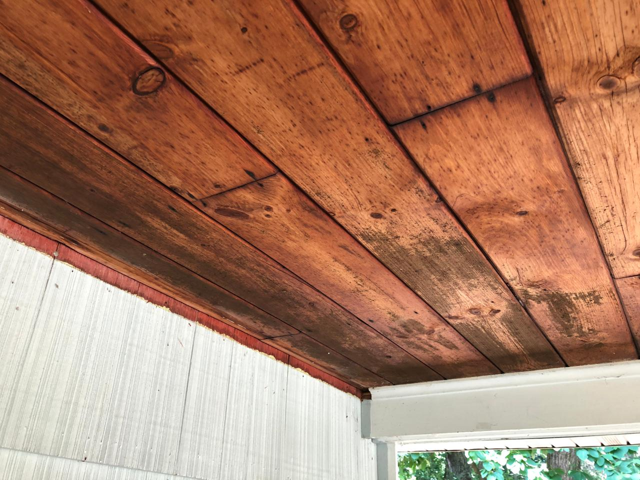 How To Remove Mold From A Wooden Ceiling Hgtv