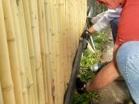 Installing a Bamboo Fence