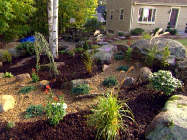Rock garden design basics video diy for Garden design basics
